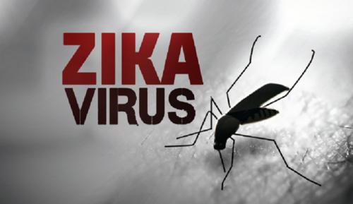zikavirus_1